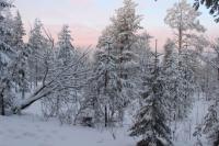 Lapland 8